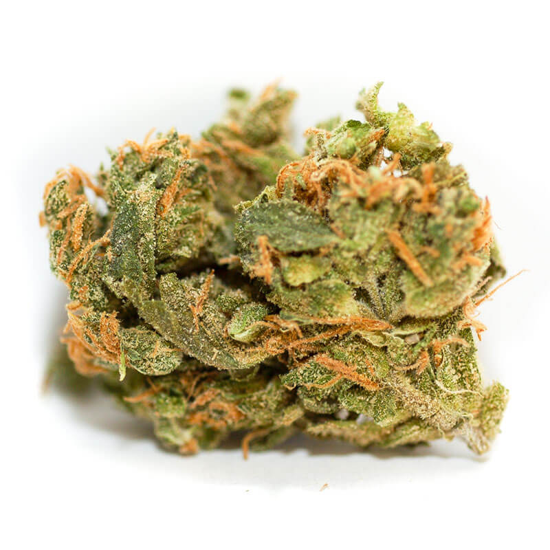 Dried bud from the Strawberry Diesel marijuana plant